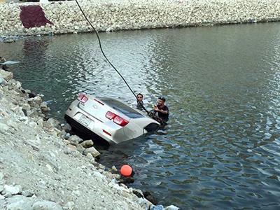 Man drowns as car falls into sea
