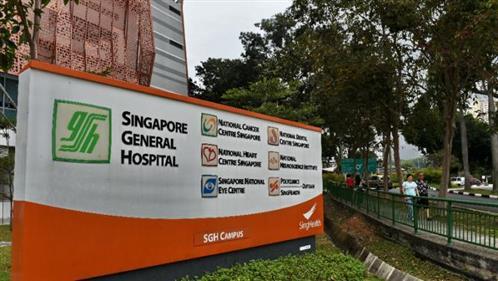 Singapore screens hundreds after hepatitis C outbreak