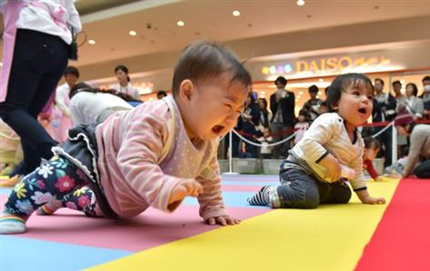 Babies crawl, and bawl, to finish line in Japan race