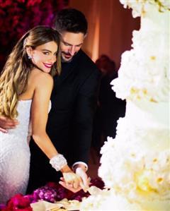 Sofia Vergara scores by sharing wedding photos on Instagram