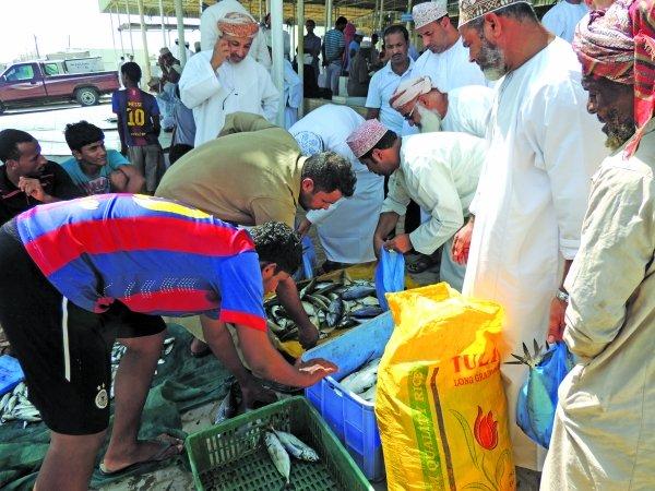 Oman: Oman imposes ban on fish exports