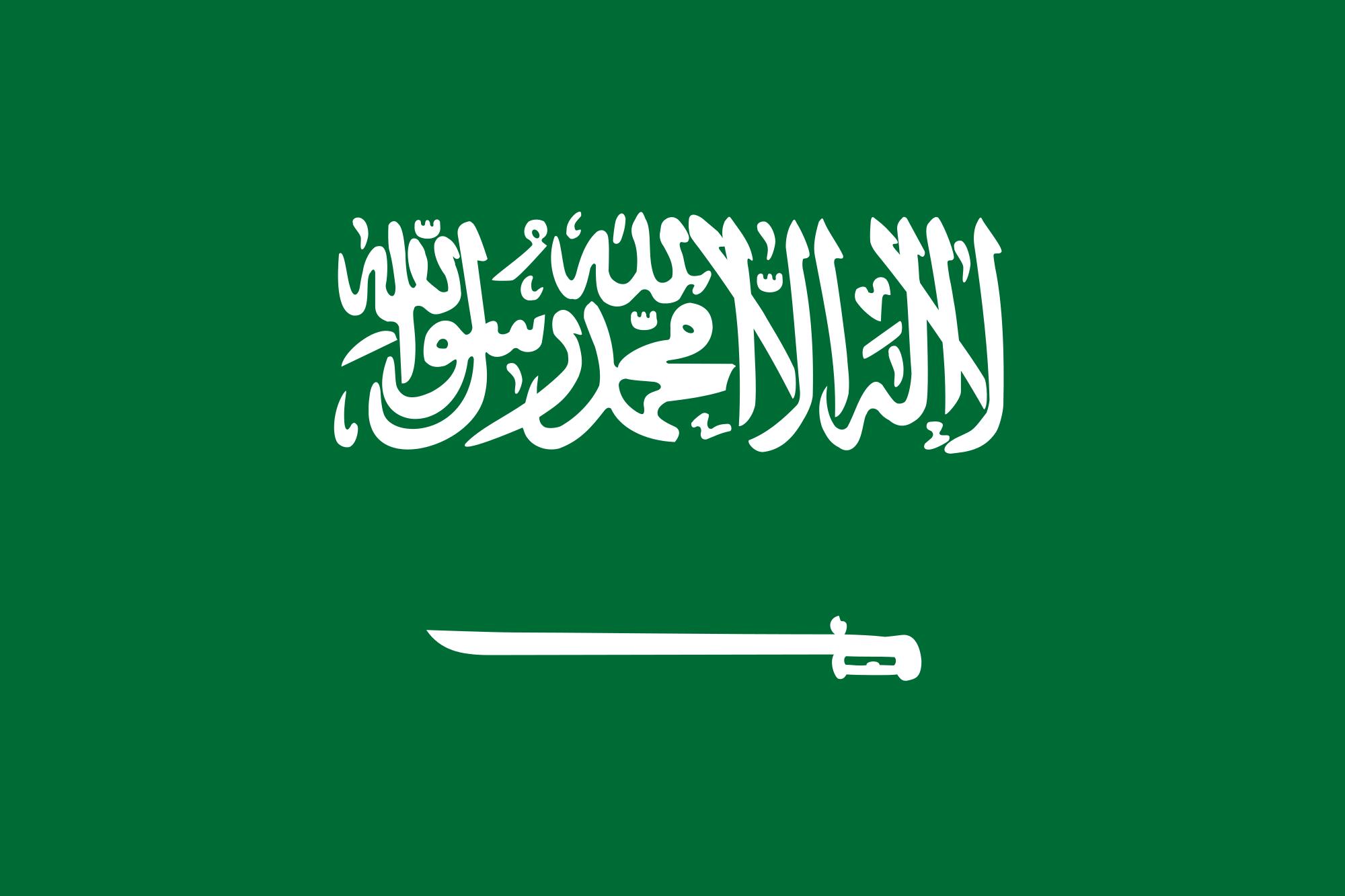 Two Saudi security officers shot dead by gunmen