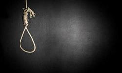 Saudi national executed for smuggling amphetamine pills