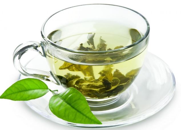 Green tea can reduce kidney damage by anti-cancer drug