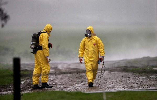 Dutch kill 190,000 ducks to contain bird flu outbreak