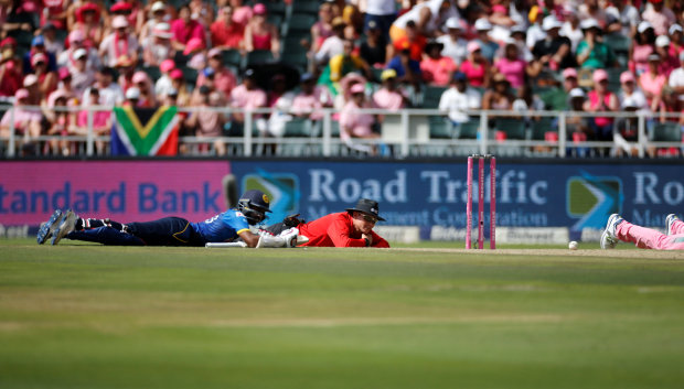 Cricket: In Pictures: Swarm of bees stops play at South Africa ODI