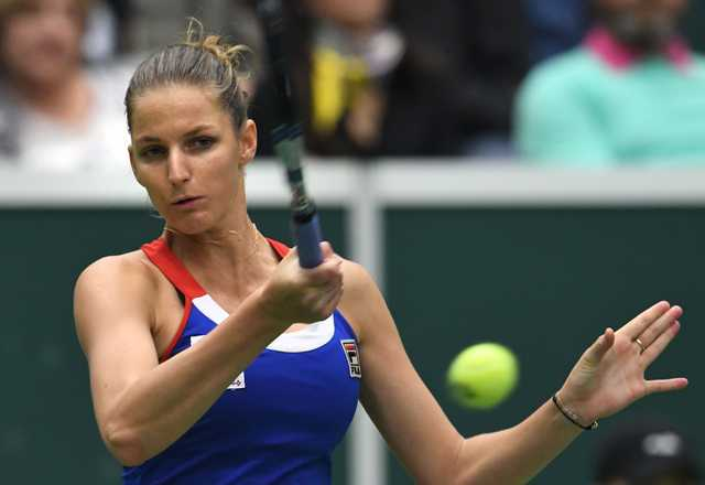 Czechs book slot in Fed Cup semis