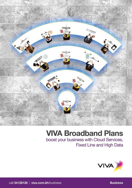 VIVA plans offer unlimited access to government sites