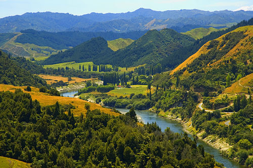 New Zealand river recognised as 'legal person'