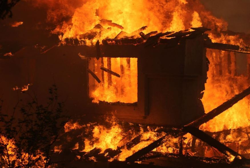 Man burns house, kills pets while trying to exterminate ants