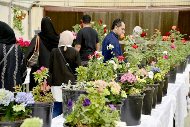 Bahrain 'can halve its flower imports', says top official