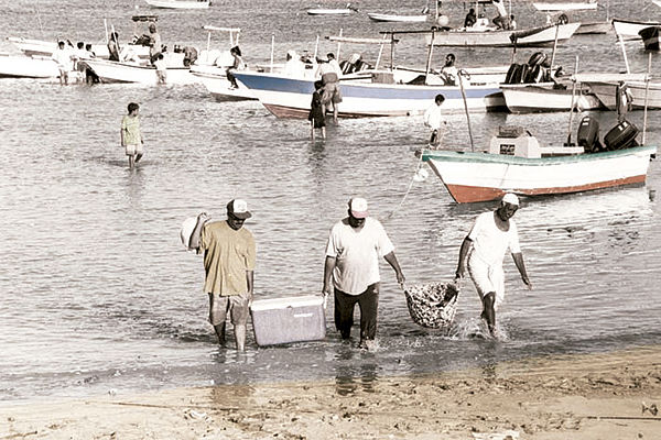 Fishermen seek work during shrimping ban