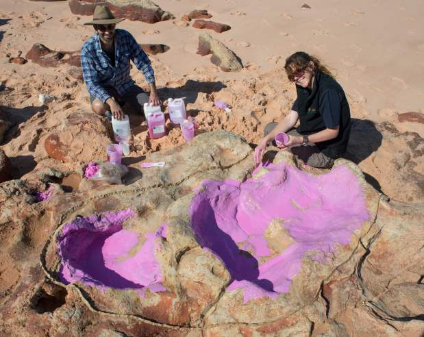 Australia scientists uncover dinosaur footprint that may be world's largest