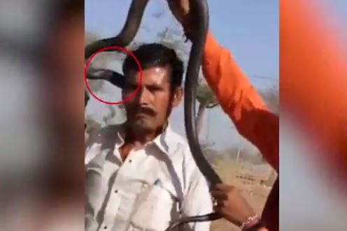 Man DIES trying to make a video with a snake around his neck