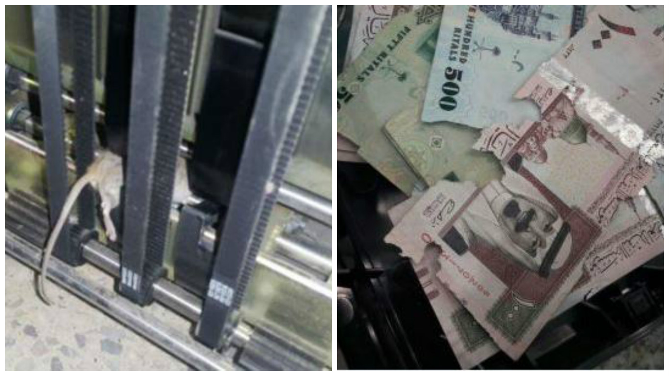 Mouse enters ATM machine and 'eats' thousands of Saudi banknotes