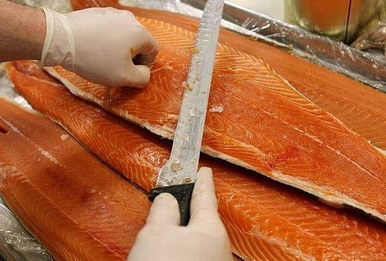 Saudi bans salmon imports from Faroe Islands