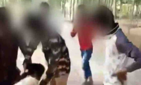 Indian police arrest three over viral sexual assault video
