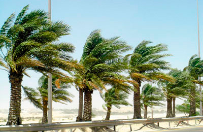 Met department warns of strong winds and rising sand