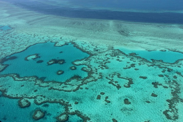 Great Barrier Reef bleaching worse than first thought say scientists
