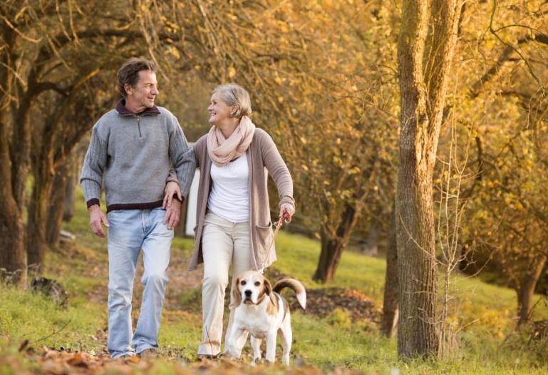 Walking their dogs keeps elderly active