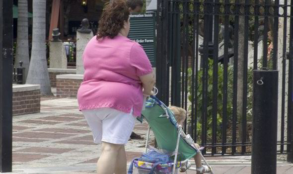 Mother's obesity boosts risk for major birth defects in children