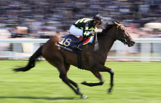 Dubai ruler scores a treble at Ascot