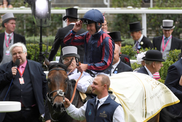Queally rides Tin Man to victory