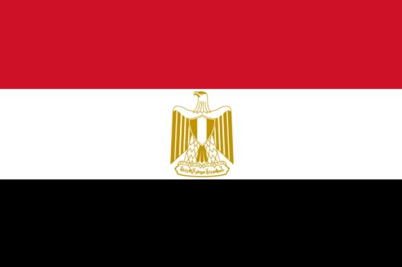 Five Egyptian policemen killed in attack on check-point