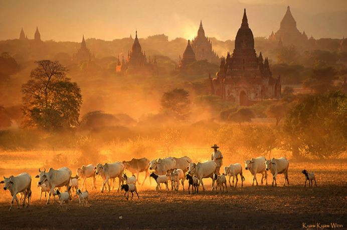 IN PICTURES: These beautiful photos by Myanmar's top photographer will make your day!