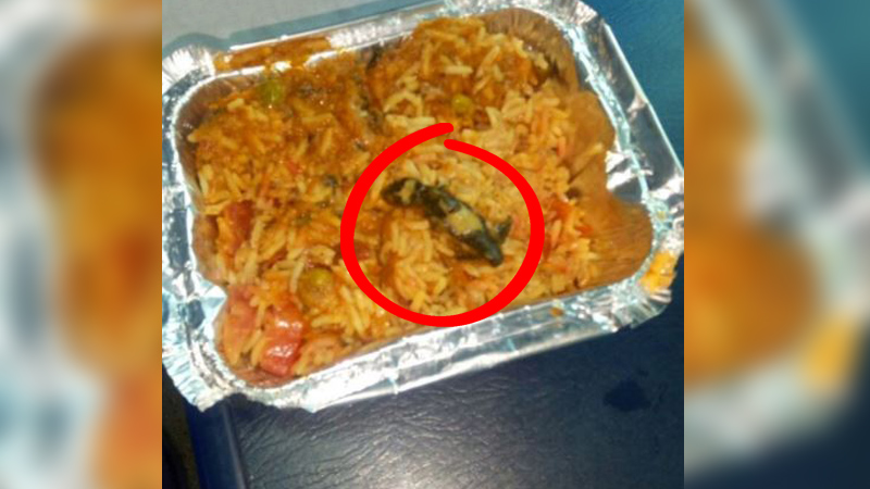 Outrage ensues as Indian Railways passenger finds DEAD LIZARD in vegetable biryani!
