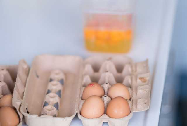 Europe egg scare: Belgium discovered contamination in June