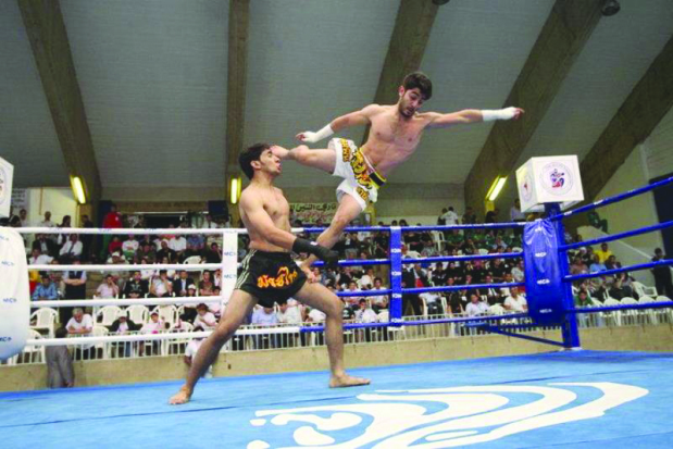 MMA event a big hit