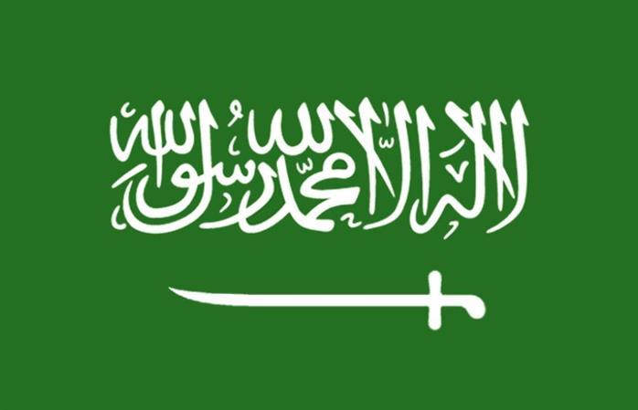 Saudi authorities foil bomb plot on defence ministry