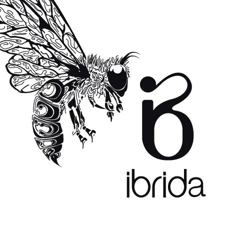 Artists ready to headline Ibrida festival