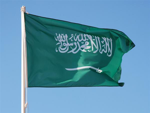 Hate twitter campaign against Saudi Arabia rapped