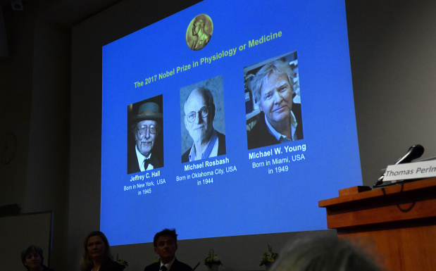 'Biological clock' scientists win 2017 Nobel Medicine Prize