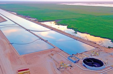 Bauer to build biggest wetland treatment plant in Oman
