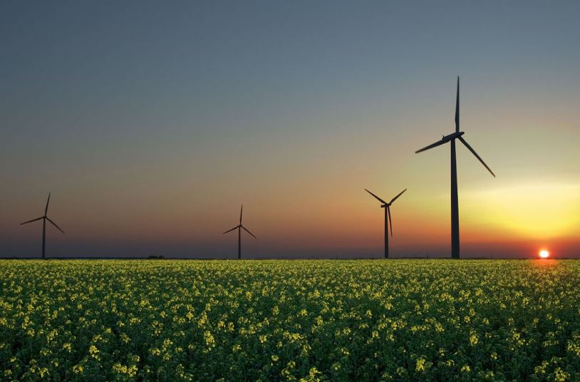 Films 'can help promote renewable energy'