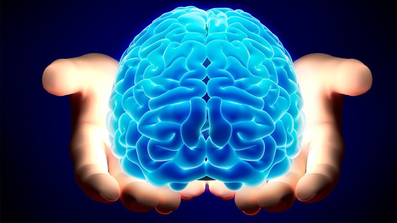 Health: 15 surprising things about the human brain