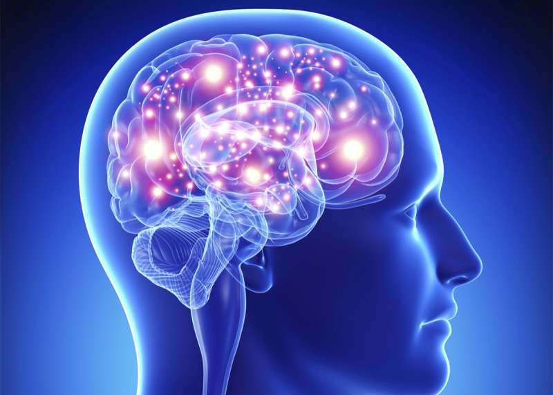 15 surprising things about the human brain