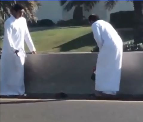 Video: Two Emirati nationals save cat from busy road