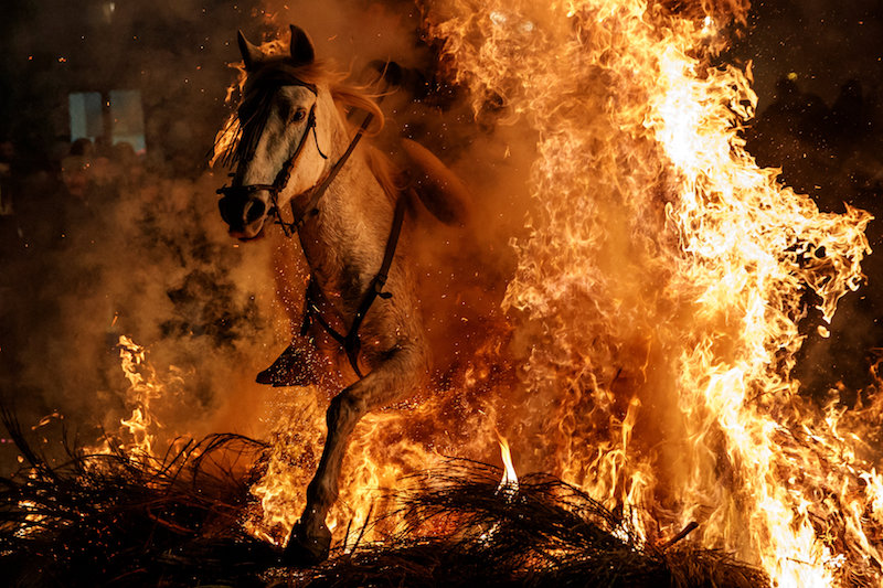 Horses jump through roaring flames at controversial Spanish festival