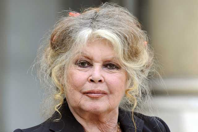 Brigitte Bardot slams #MeToo 'publicity-seeking' actresses