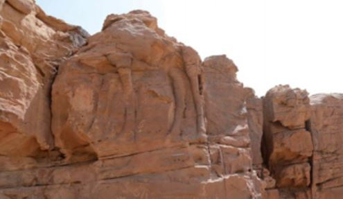 2,000-year-old camel sculpture discovered in Saudi desert