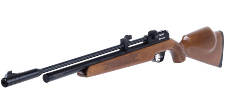 Man with air gun convicted