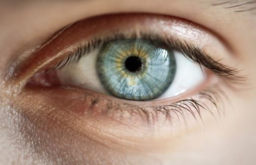 Stem cell eye treatment safe, restores some vision says study