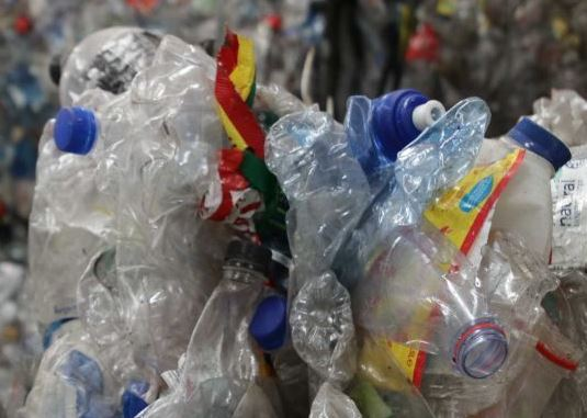 Plastic-eating enzyme holds promise in fighting pollution