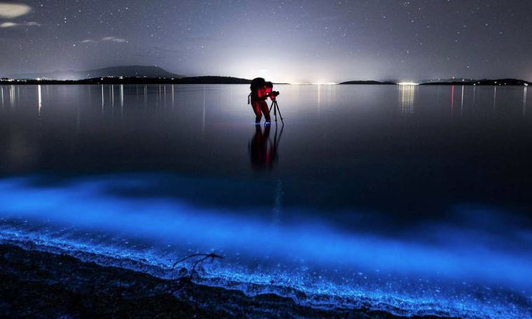 PHOTOS: Colourful natural wonders from around the world