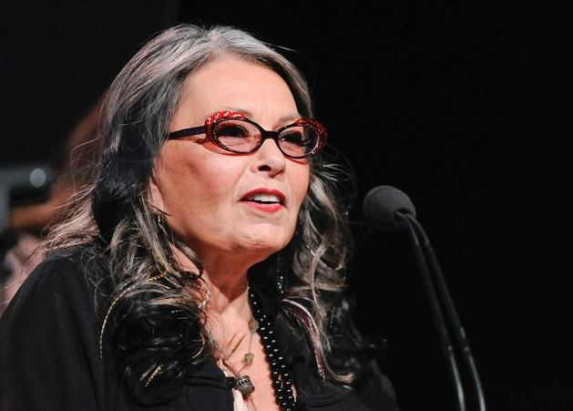 Roseanne Barr might return to TV