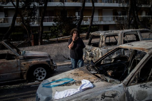 World News: Greek wildfires toll rises to 79 amid search for survivors